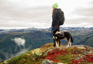3 bonding exercise with your dog Hiking